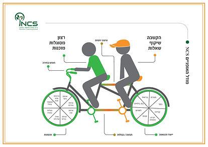מודל אופניים אוגוסט 16 JPG.jpg