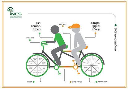מודל אופניים ב אוגוסט 16 (2) JPG.jpg