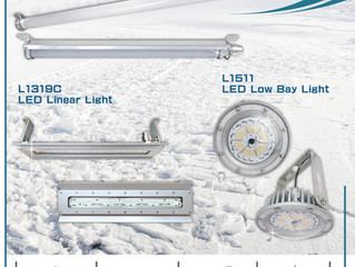 Lighting Solutions for Frozen Areas and Cold Rooms (-65°C low-temperature environment)
