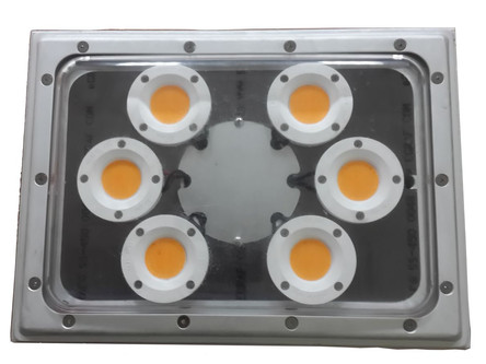 Waterproof LED Lights New Product Announcement