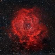 Rosette RGB