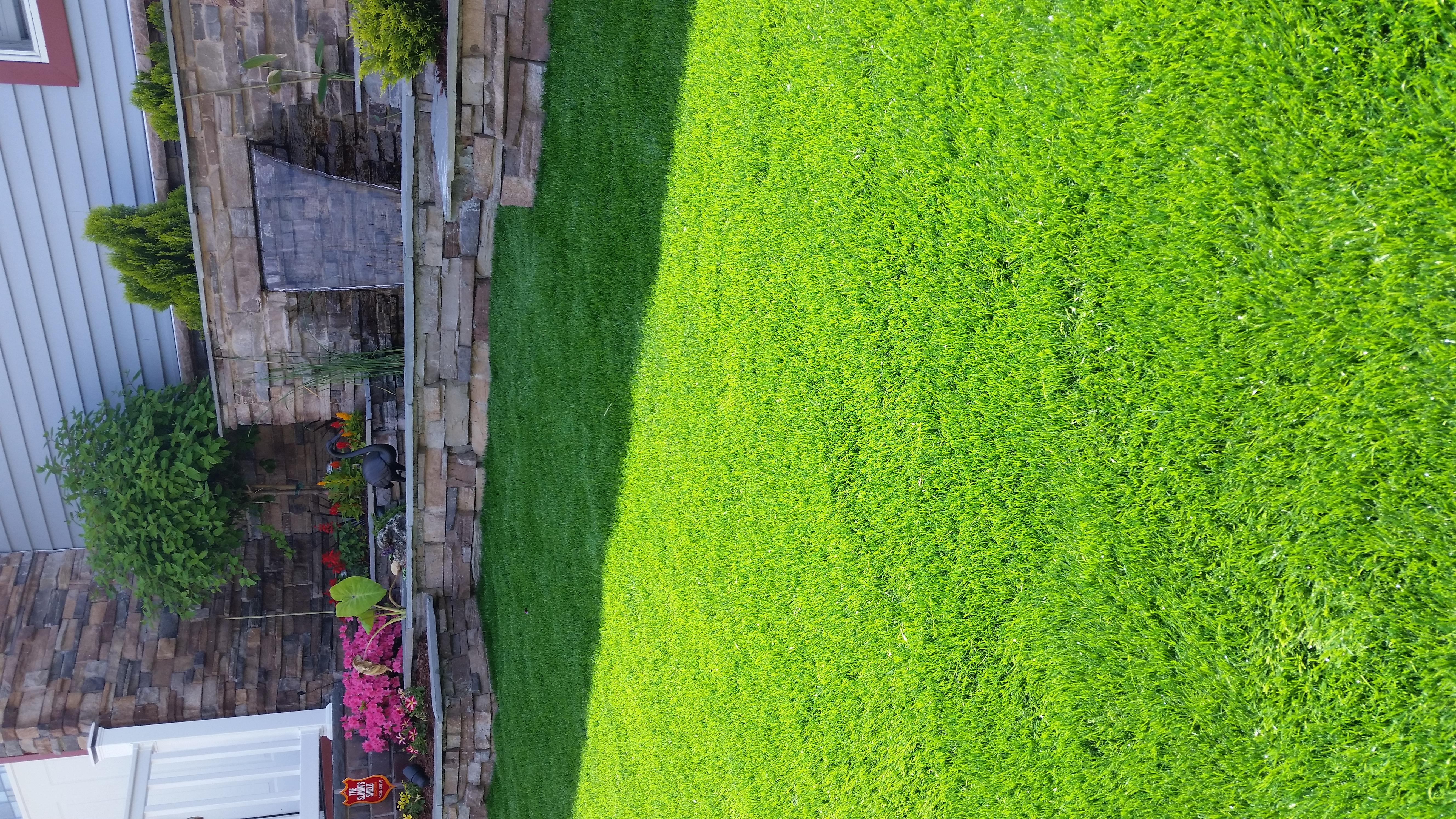 Artifitial Grass