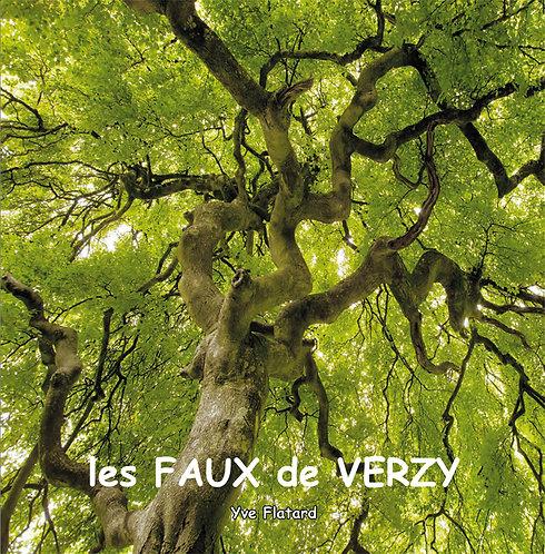 Les Faux de Verzy / Yve Flatard