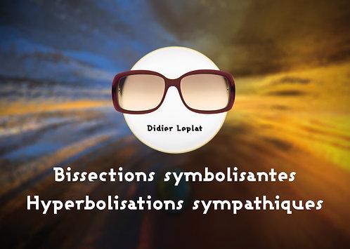 Bissections symbolisantes / Didier Leplat