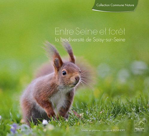 Entre Seine et forêt / Lorraine Bennery