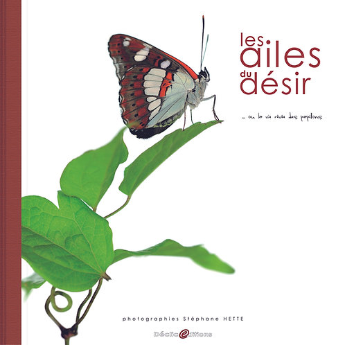 Les Ailes du Désir / Stéphane Hette