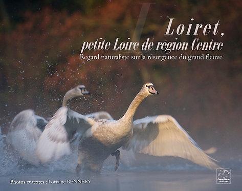 Loiret, petite Loire de région centre / L. Bennery