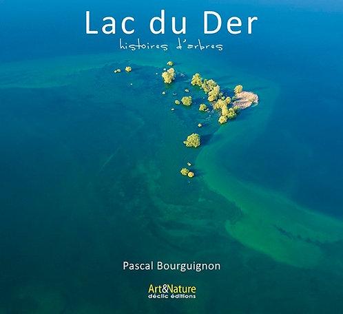 Lac du Der / Pascal Bourguignon