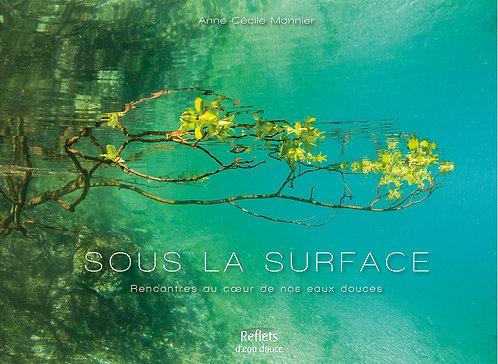 Sous la surface / Anne-Cécile Monnier