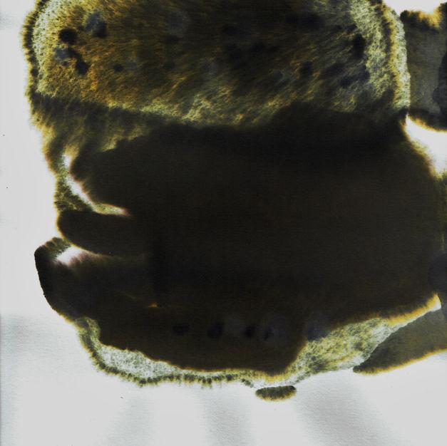 Blob XII