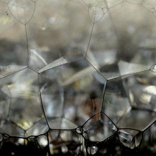 Bubbles, 2015