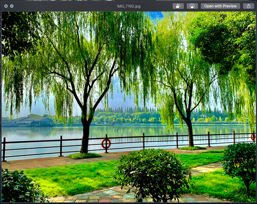 Chongming Green