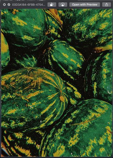 Watermelon Gold