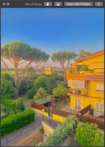 Rome Yellow