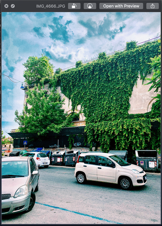 Rome Green