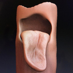 Loose lips #3D #cgi #tongue #song #sculpt #render #digital #daily #gross #grotesque #artist #art #di