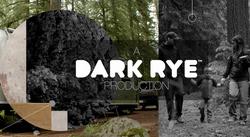 Dark Rye Styleframes