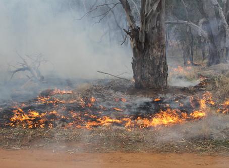 Culture Fire: The Strategic Burn by Samantha Alexis