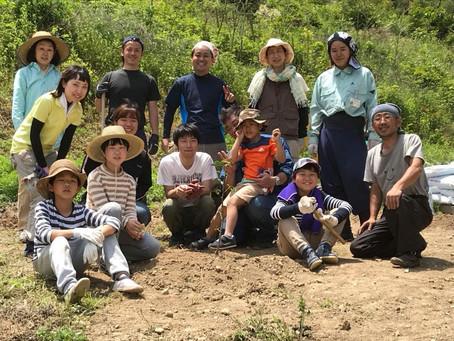シトラスの谷プロジェクト 8月のボランティア募集です。
