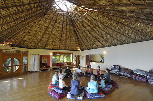 Meditation with people- tiger.JPG