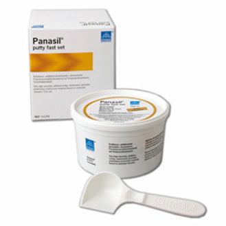 Panasil Putty Fast