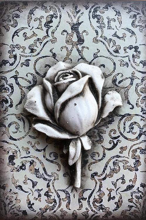 Embellished - Rose