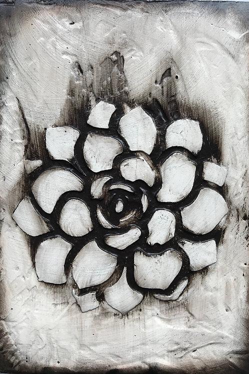 Bloom - 7