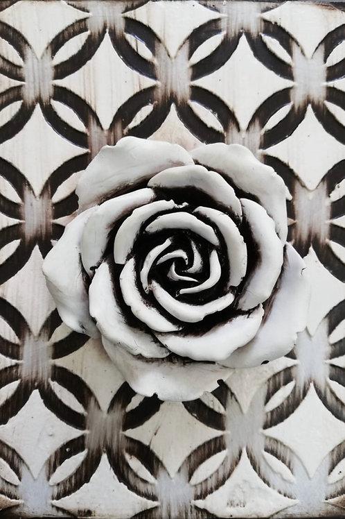 Patterned Bloom