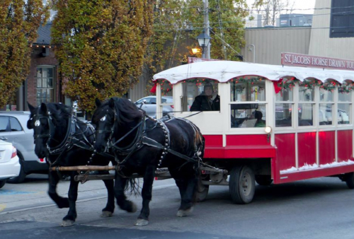 St-Jacobs-Horse-Drawn-Tours