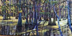Louisiana Swamp $250