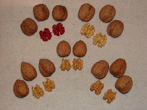 Walnut types.JPG