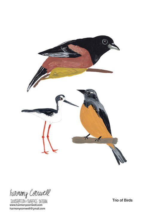 Harmony Cornwell 2020 - Bird Project26.j