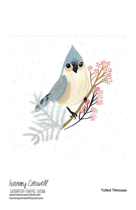Harmony Cornwell 2020 - Bird Project.jpg