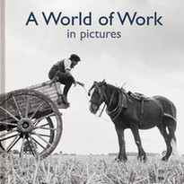 World of Work in Pictures