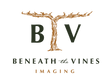 BTV_Logo_Primary_FullColor_DarkGreen.png