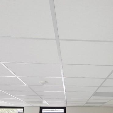 Dalledeplafond.jpg