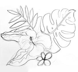FlowersPlants Sketch