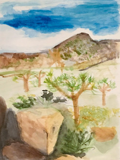 Joshua Tree National Park1