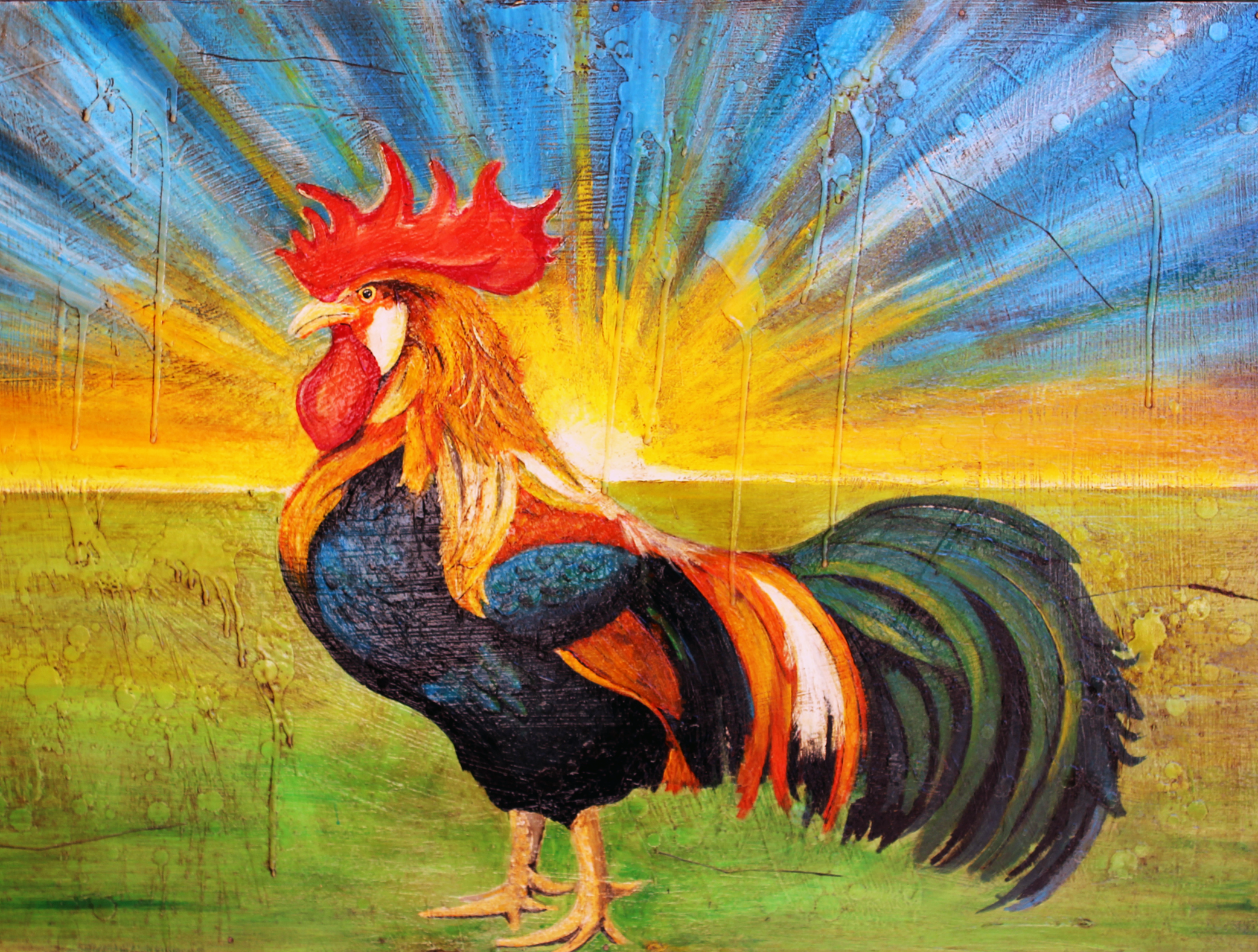 Rooster-Sunrise-Danny-Cottingham