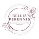 Bellis Perennis.png