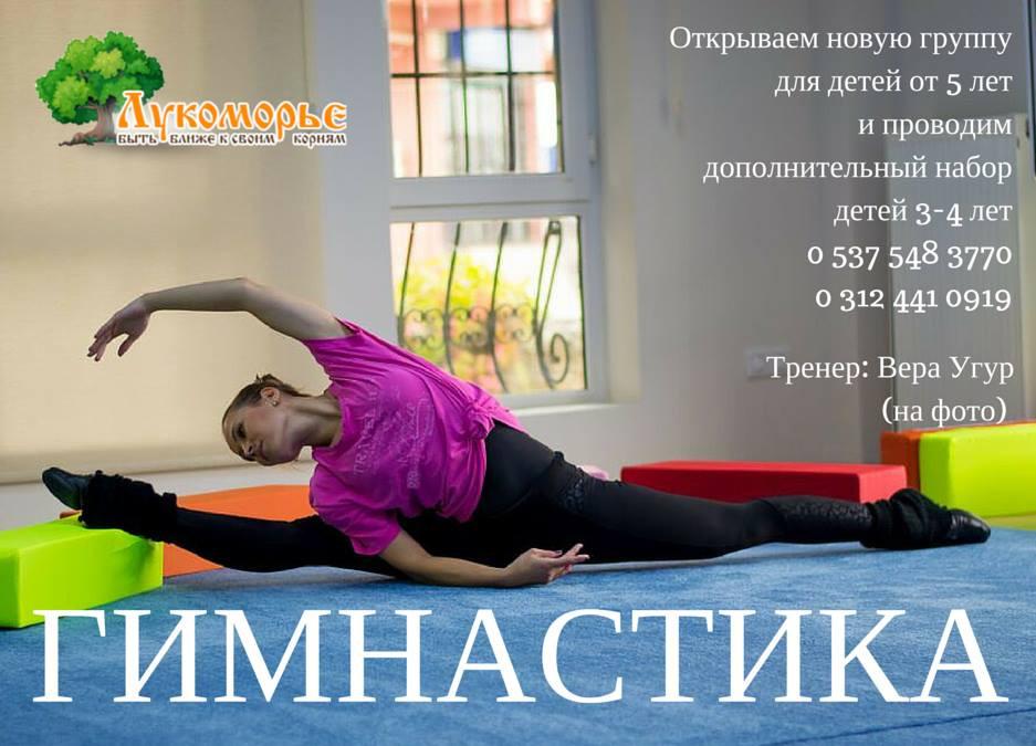 """Гимнастика в """"Лукоморье"""""""