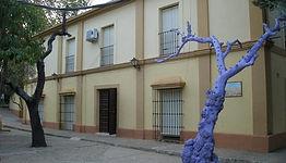 Fotografía de la fachada de la escuela con un árbol seco pintado de morado