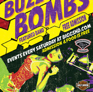 Band: The Buzz Bombs