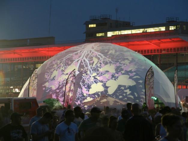 virgin mobile festival