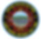 tdfd logo .png