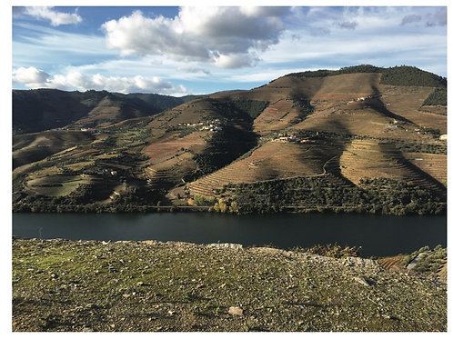 """Jeff Higgs """"Douro Valley, Portugal"""" Card"""
