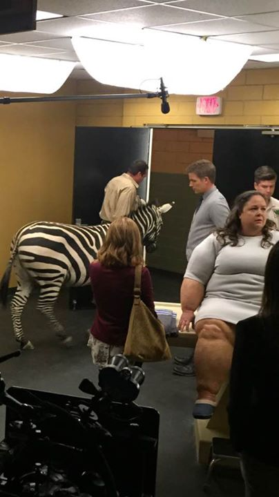 And who doesn't like getting to work with a Zebra_!_!
