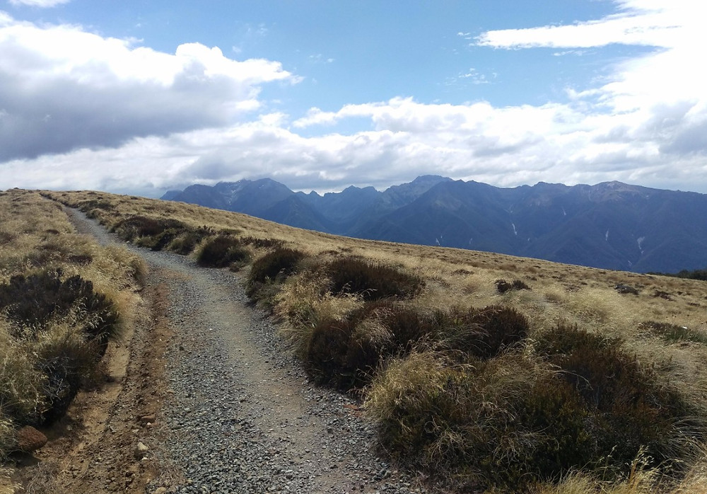 Path up the Kepler Track with stunning mountain backdrop