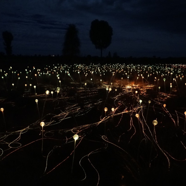 Uluru light field installation