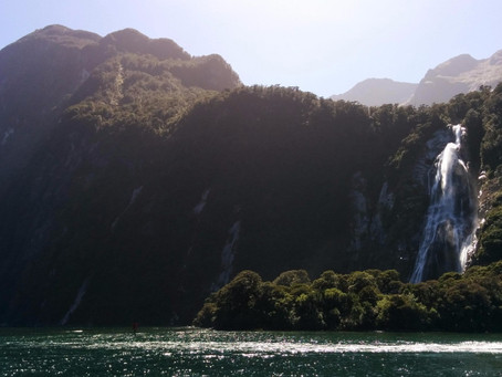 THE TOP NEW ZEALAND EXPERIENCES